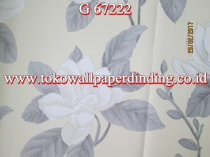IMG_5193