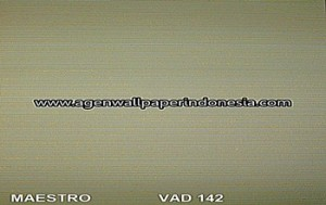 APA 142