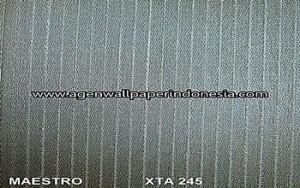 XTA 245