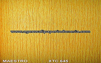 XTC 645