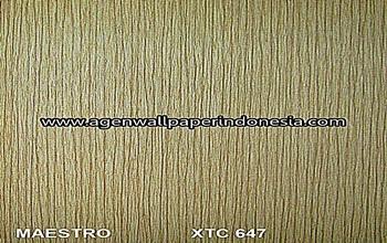 XTC 647