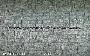 XTC 713