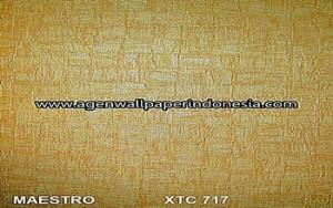 XTC 717