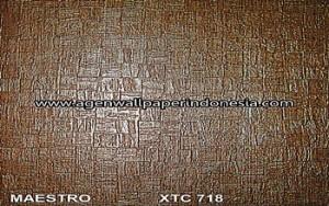 XTC 718