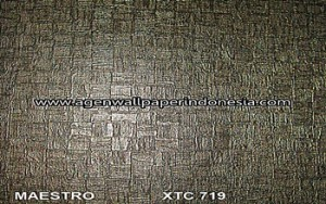 XTC 719