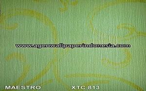 XTC 813