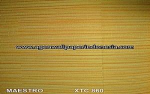 XTC 860