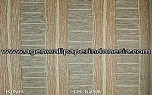 TR 6256