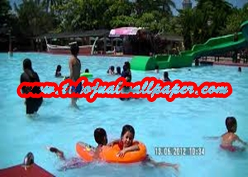 gambar kolam renang.jpg10