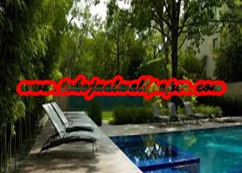 gambar kolam renang.jpg2