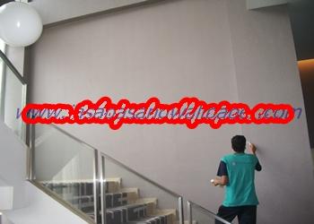 IMGP3703 (2)